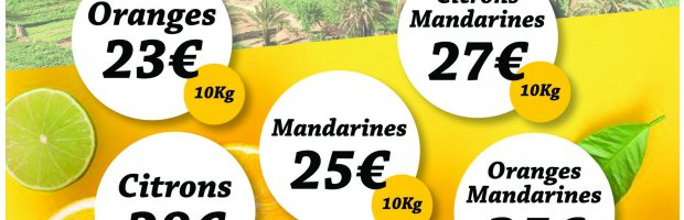 Vente solidaire d'agrumes